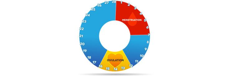 fruchtbare tage berechnen mit ovulationstest und anderen. Black Bedroom Furniture Sets. Home Design Ideas