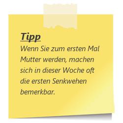 Tipp Senkwehen