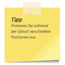 Tipp Positionen