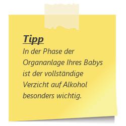 Tipp Alkohol verzichten